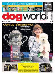 affenpinscher crufts 2016 nyheter kennel admiravel griffons in sweden