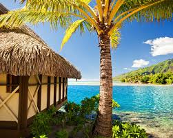 vacation packages to the caribbean aruba vacation package deals