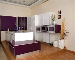 How Much Are New Kitchen Cabinets Kitchen Kitchen Wall Storage Wall Shelves With Doors Single