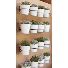 wall planter hook crate and barrel display design pinterest