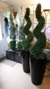 5ft high artificial rosemary spiral plant outdoor topiary tree in
