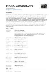 Sharepoint Developer Resume Sample by Solution Developer Resume Samples Visualcv Resume Samples Database