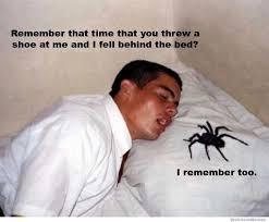 Afraid Of Spiders Meme - afraid of spiders burn house meme of best of the funny meme