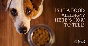 taste of the wild pet food based on your pet u0027s ancestral diet