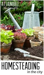 best 25 homestead gardens ideas on pinterest backyard farming