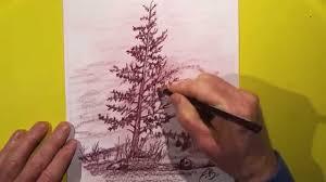 pencil drawing lone pine tree