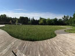 buitenschot park haarlemmermeer the netherlands h n s