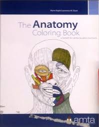 anatomy coloring book download the anatomy coloring book amta student custom edition wynn kapit