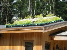 water friendly demonstrations ipswich river watershed the green roof