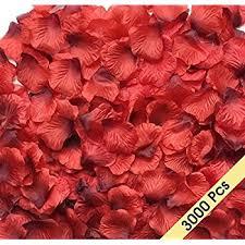 Rose Petals Amazon Com Obmwang 2000 Pcs Dark Silk Rose Petals Wedding Flower