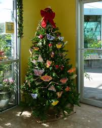 a florida butterfly christmas tree mosi outside