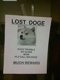 Lost Doge Meme - the best of doge gallery ebaum s world