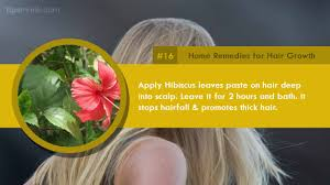 Best Hair Loss Treatments 30 Top Home Remedies To Promote Hair Growth U0026 Treat Hair Fall