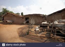 Jharkhand Tribal House Santhal Tribe Jarkatand Village Bokaro District