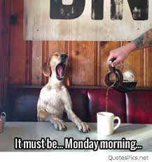 funny monday morning meme picture must be monday quotes pics