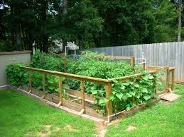 raised bed vegetable garden gate and fence attached right to beds