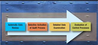 introduction to data analysis for auditors and accountants the