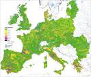 natural vegetation of europe