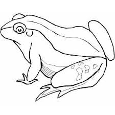 green coloring page reptiles coloring pages