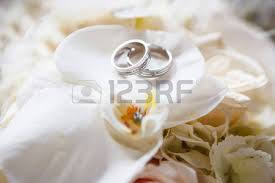 wedding rings on wedding rings images stock pictures royalty free wedding rings