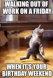 Birthday Weekend Meme - cool cat stroll meme imgflip