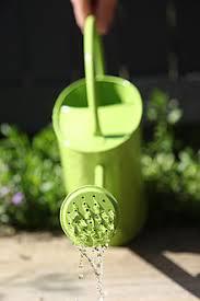 watering can wikipedia