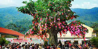 wishing tree lam tsuen wishing trees hong kong tourism board