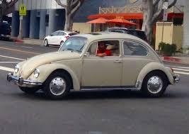 bug volkswagen 2015 volkswagen beetle feral cars