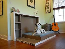 Modern Accessories For Living Room by Modern Accessories For Your Pets Interior Design Ideas Avso Org