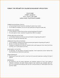Velvetjobs Resume Builder by Resume For Scholarship Application Example Template