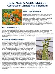 connecticut native plants download native plant landscaping in southwest montana docshare tips