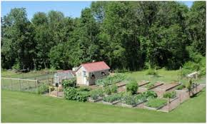 backyards winsome full image for small backyard chicken coops