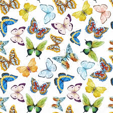 butterfly stock vectors royalty free butterfly illustrations