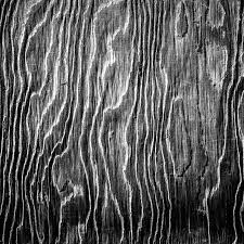 black and white artistic wood texture stock image image 29072119