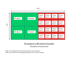 planning 4x8 vegetable garden layout with strawberry and rhubarb