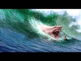 biggest megalodon shark megalodon the biggest shark that ever lived art paintings more