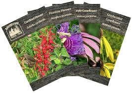 seed packets seed packets roundstone seed company