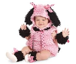 newborn boy halloween costumes a chihuahua with a on top of its head unicorn http