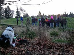 Solstice Park West Seattle by Three Dogs Welcome Winter With A Santa Visit A Solstice Park