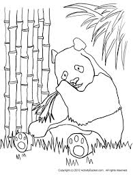 panda bear outline drawing picturespider com clip art library