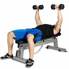 Workout Weight Bench Best Weight Bench 2017 Top 5