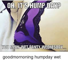 Hump Day Meme - ohd its hump day you mean wet panty wednesday nematic net
