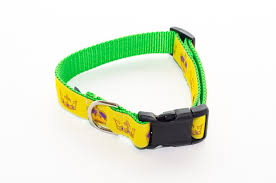 mardi gras dog collars from mardi gras gold and green crowns dog collar 21