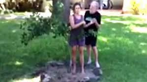 Backyard Safari Habitat by Backyard Sump Pump Drainage Backyard Safari Land Water Habitat The