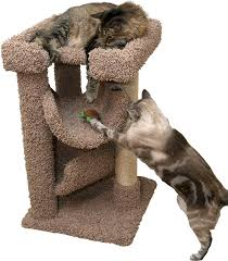 cat trees carpet covered works of art cat tree small cat