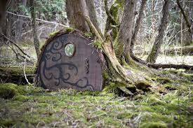 interior uses for tree stumps pictures of garden doors