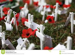 anzac day poppies royalty free stock photography image 35116237