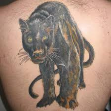 panther tattoo meanings itattoodesigns com