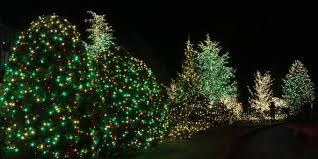 how to put christmas lights on a outdoor tree how to put christmas lights on a outdoor tree elegant 28 oklahoma