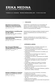 Intelligence Analyst Resume Examples by Key Account Manager Resume Samples Visualcv Resume Samples Database